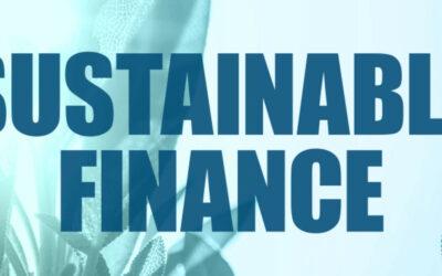 Bundesregierung beschließt wegweisende Strategie für Nachhaltige Finanzierung